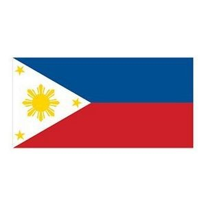 Flag of the Philippines Temporary Tattoo