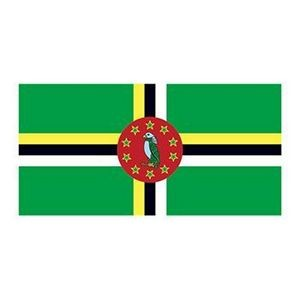 Dominica Flag Temporary Tattoo
