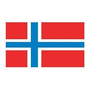 Norway Flag Temporary Tattoo