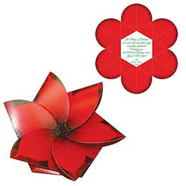 Poinsettia Flower Gift Card Holder/Holiday Card w/ Full Color Graphics Both