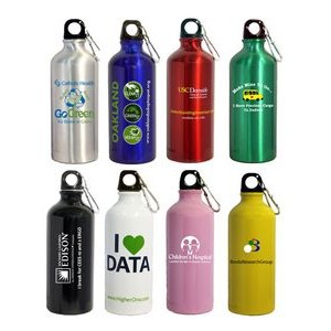 22 Oz. Aluminum Sports Water Bottle w/ Carabiner